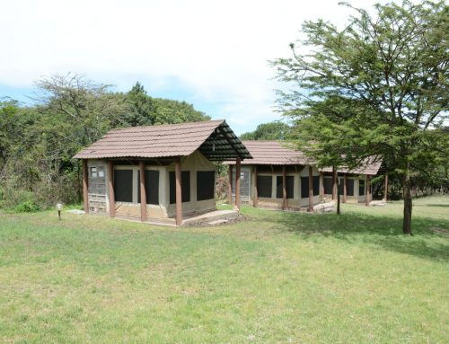 Sankale Village Camp